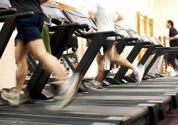 Dubai,Abu Dahbi,UAE,Gyms,Fitness,weight lifting,high protein,Diet,Exercise